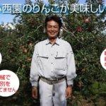 信州志賀高原の麓でりんご専門園として60年の実績『サンふじりんご専門店 小西園』(下高井郡山ノ内町)