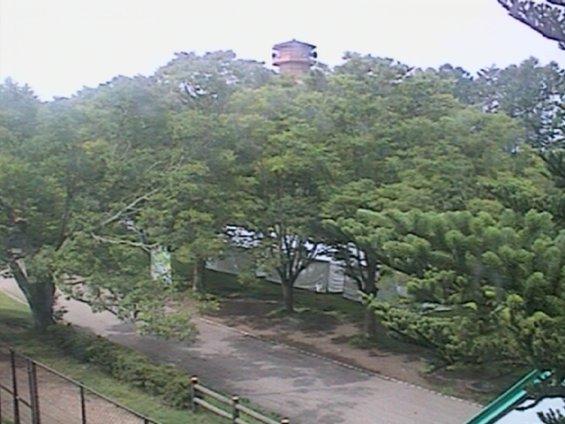 松本市アルプス公園のライブカメラ映像(2019年7月)30分毎の静止画。