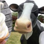 ソフトクリームがおいしいんだモ~!『ほっとミルク(信州ミルクランド)』(松本市梓川)