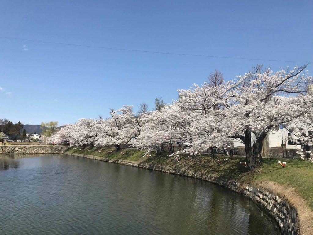 2018年4月5日の松本城の桜