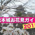 【松本城】桜の開花情報(2018年4月7日更新)お花見・駐車場・ライトアップ・イベント