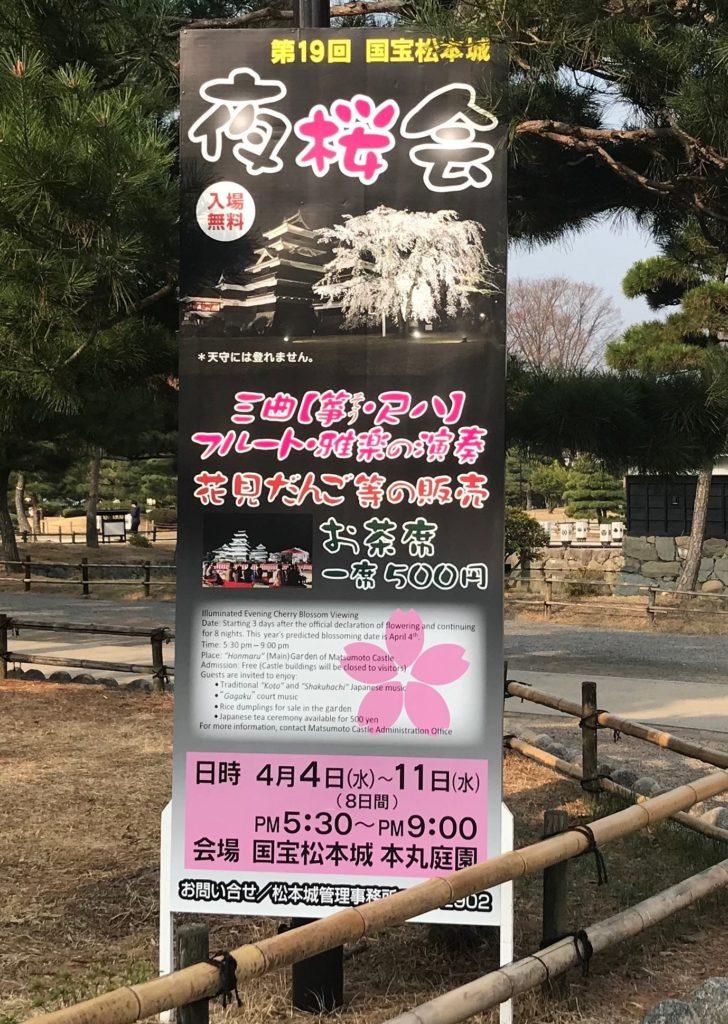 松本城 夜桜