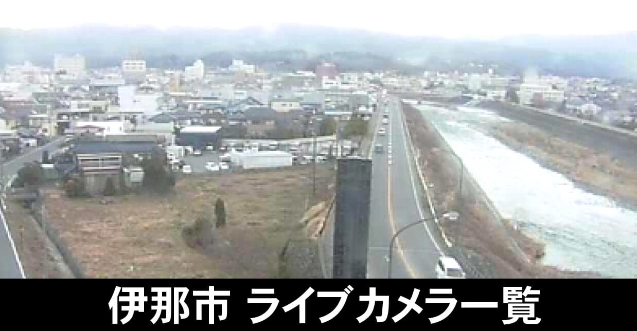 県 ライブ カメラ 道路 新潟
