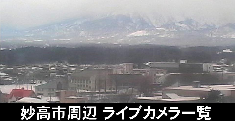 新潟 ライブ カメラ