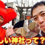 あんころもちと行く!深志神社で初詣。そして深志神社を食べる??