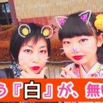 【猫娘のカラーのすすめ】『アパレル立ち上げ物語』vol1.「白」が、無い!!