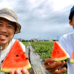 松本市波田でスイカ「そーゆーすいか」作った結果…。