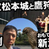 城下町・鷹匠町に蘇るタカ!『国宝松本城と鷹狩り』開催